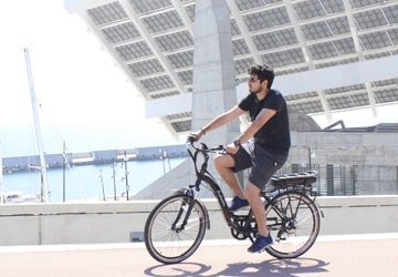 Valley Electric Bike