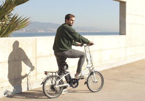 electric Been Bike